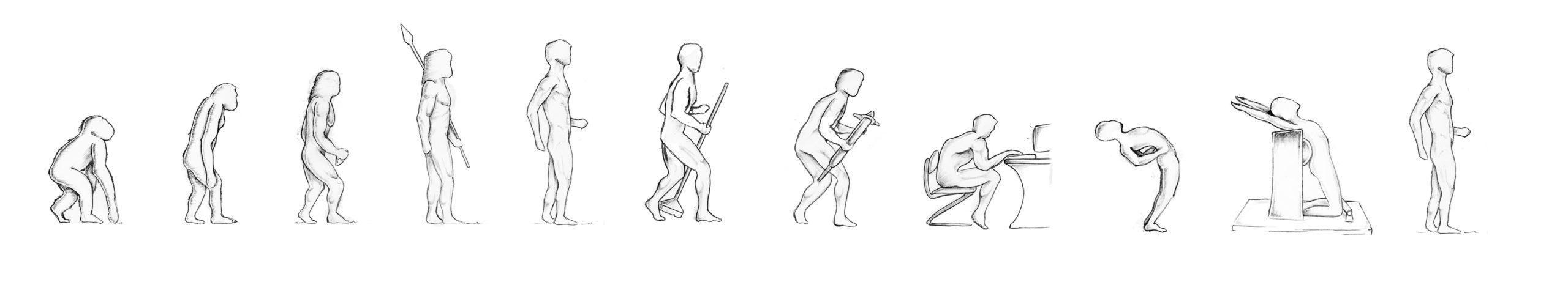 Five_Evolution_des_Menschen